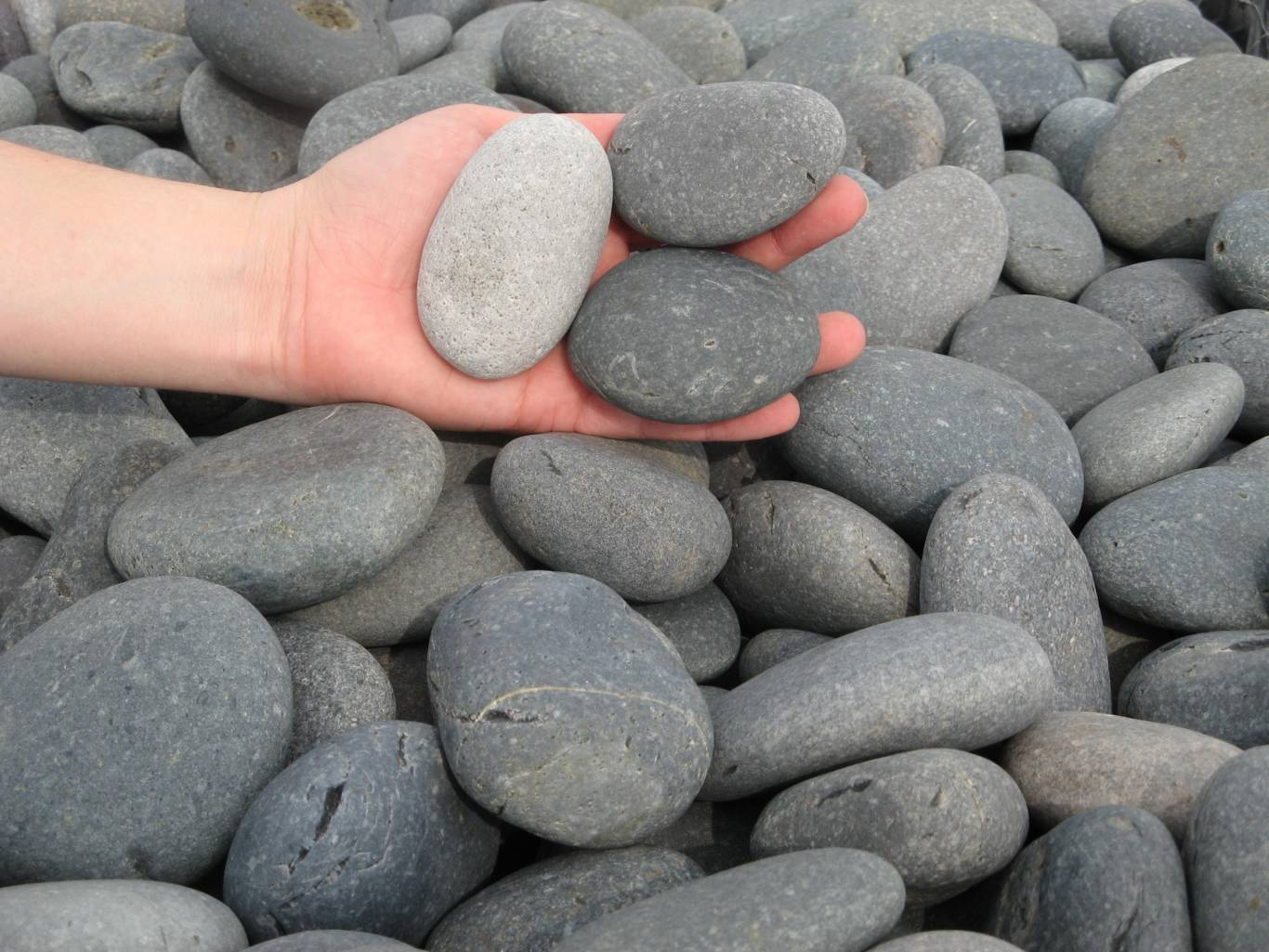 Earthworks Natural Stone : Mexican beach pebbles earthworks natural stone
